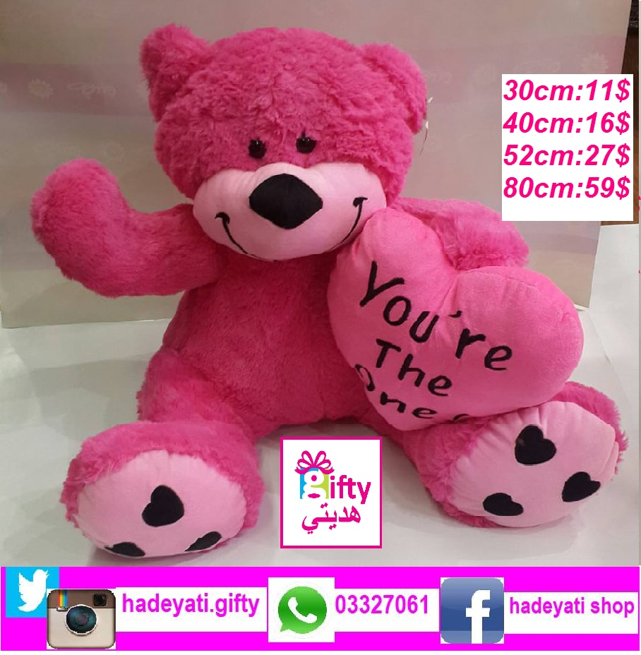 Pink Bear (You're The One)